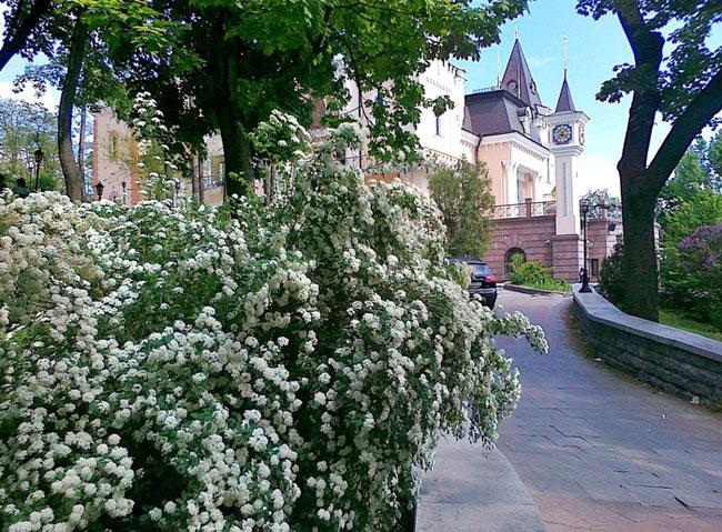 Крещатый парк в Киеве